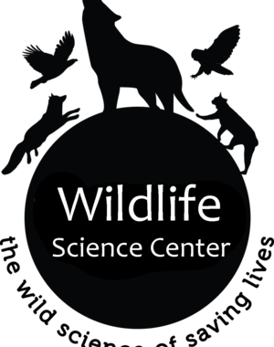 Wildlife Science Center Forest Lake